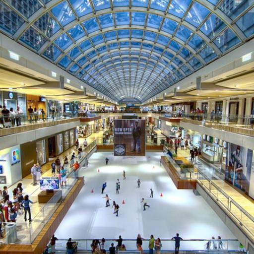 Image result for galleria houston ice skating