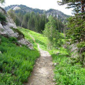 Montana   Hiking Trails by State   Hiking  b21971940b1ae
