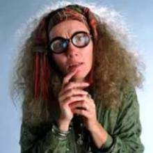Sybill Trelawney Professor And Harry Potter-pic5171